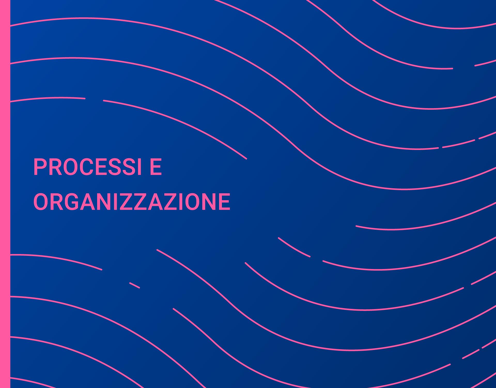 Rapporto Processi e Organizzazione 2019 - Organizzarsi per innovare